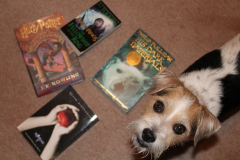 Scrappy Doo protects popularly challenged books from being banned.