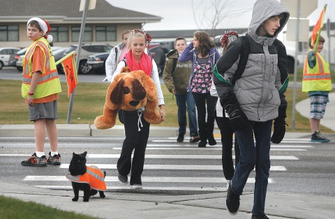 Safety cat, Sable, helps kids cross the roads safely